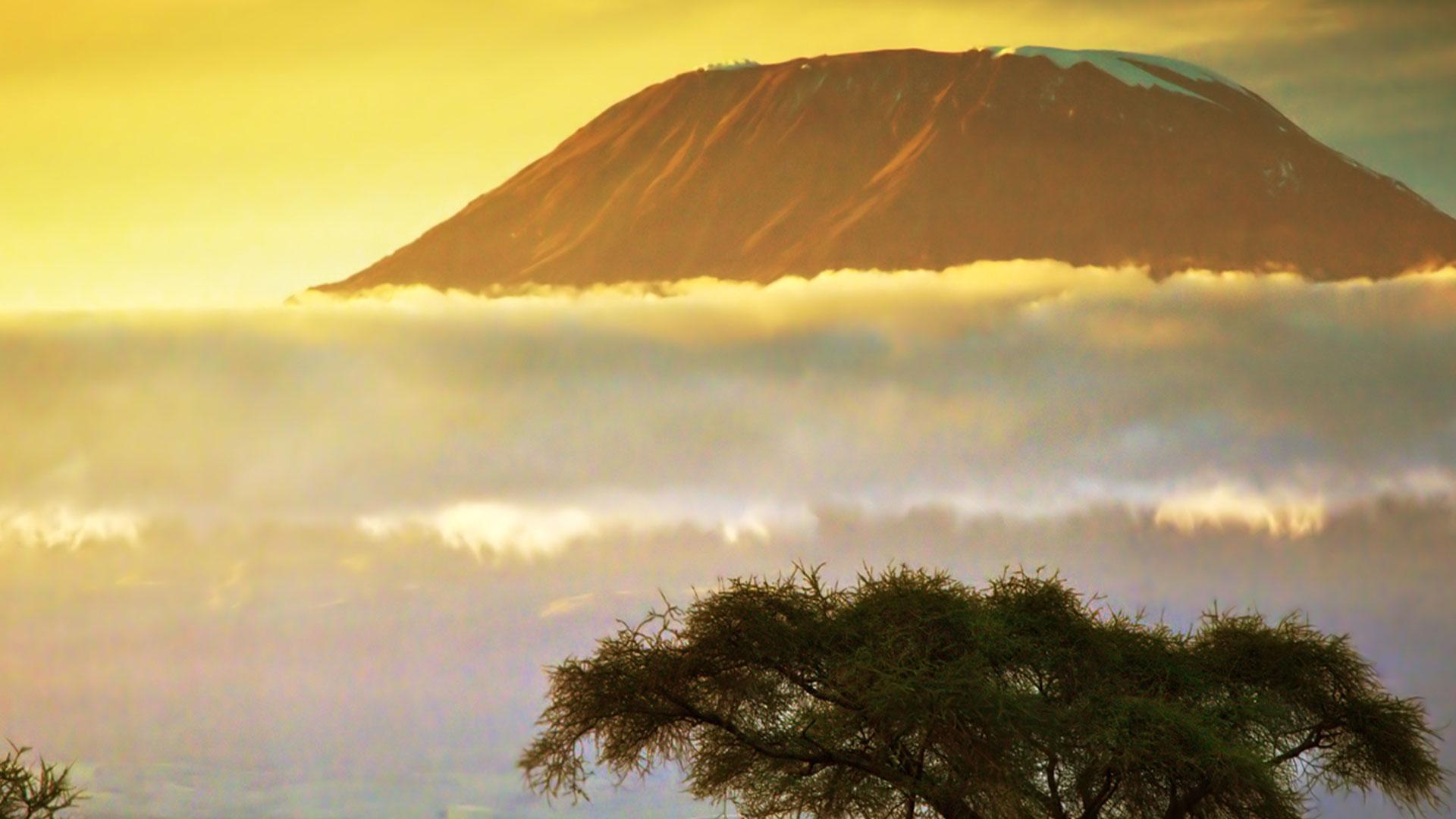sommet de l'Afrique