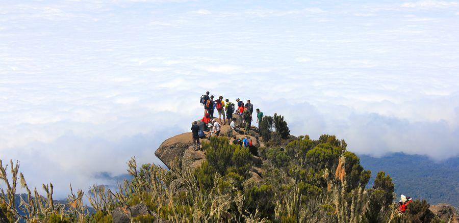 kilimandjaro trekking marangu