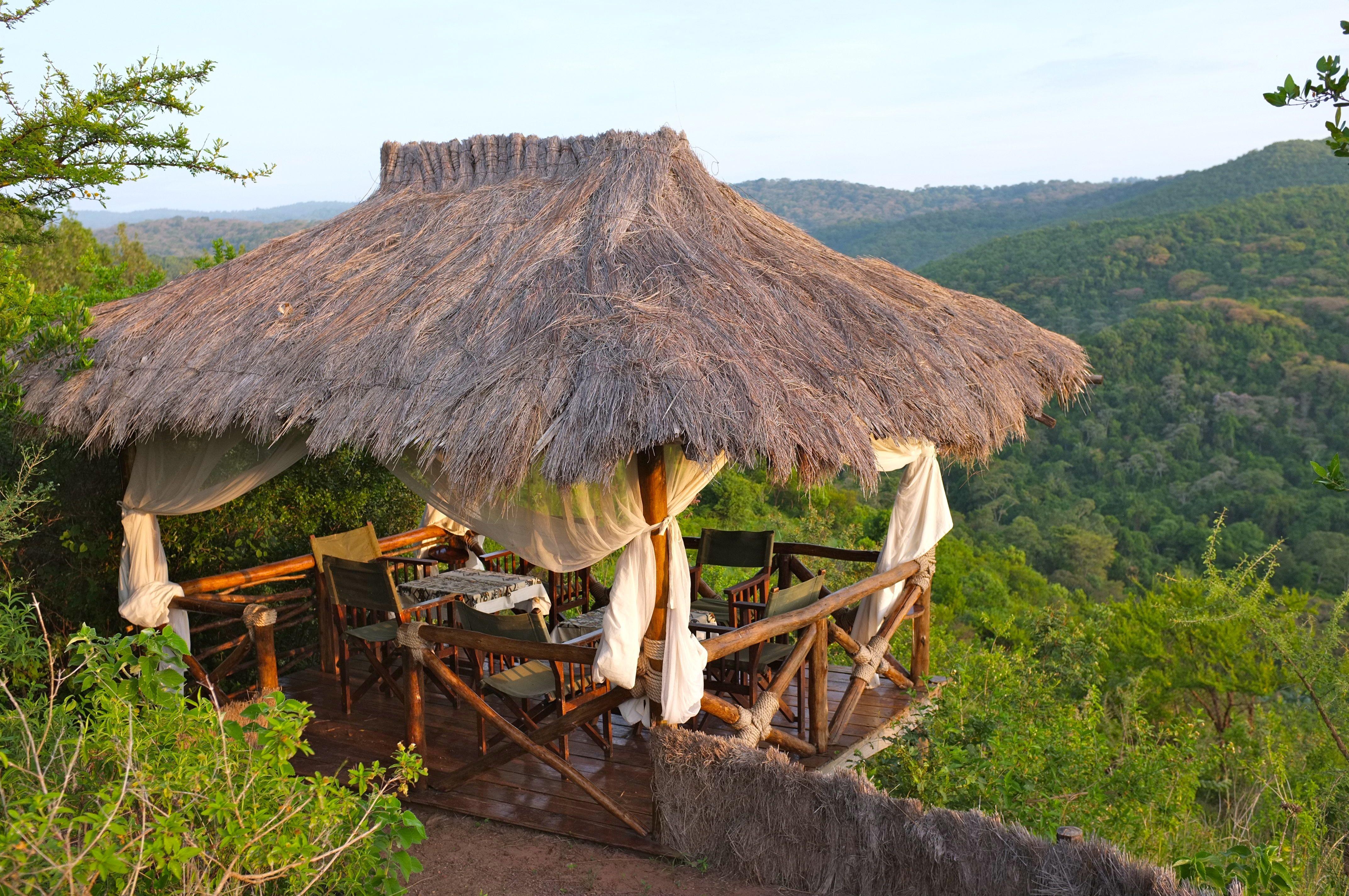 ngorongoro tienda de campaña en el bosque