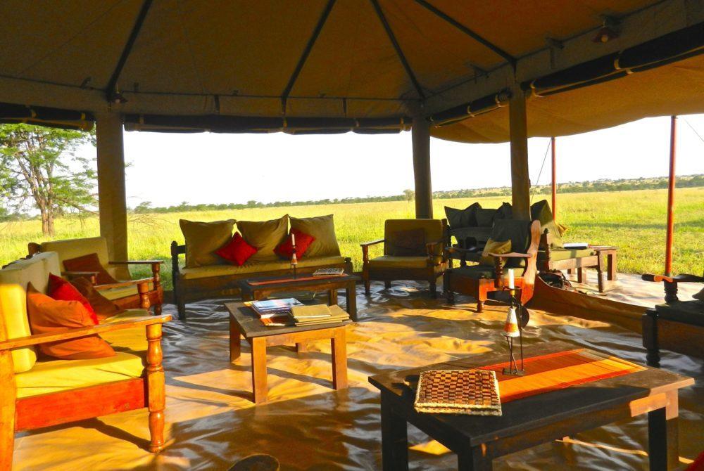 Camp Migration Tanzanie
