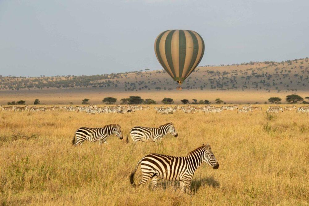 Safari Montgolfière Serengeti Tanzanie