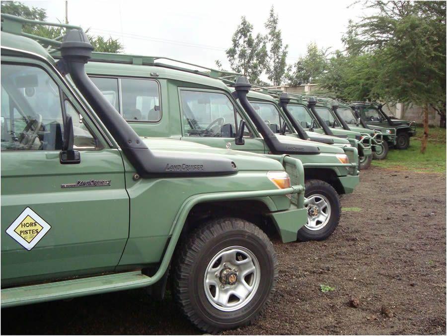 Voyage Safari En Tanzanie