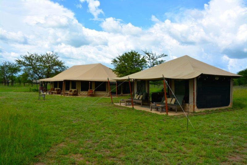 Voyage Safari Tanzanie